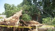 President Obama has signed a major disaster declaration for Virginia following last month's severe storms.
