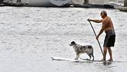 Not many people had heard of stand-up paddleboarding until 10 years ago, when surfing star Laird Hamilton started catching gigantic waves standing on an oversized surfboard that he propelled with a long outrigger kayak paddle. But SUP, as it's known, didn't become today's hottest aquatic sport until average folk like Jeff Golden and Tracy Hartman started doing it out of the surf zone.