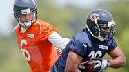 BOURBONNAIS — When <b>Matt Forte</b> signed his new contract shortly before the Bears reported to camp, the role of <b>Michael Bush</b> became more defined.
