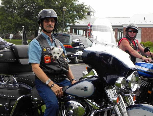Jerry Wingert tucks Jesse, his 11-week-old Westie, into his vest for the 75-mile ride to raise money for the American Legion Riders Food Pantry Ride to benefit South Central Community Action Programs' six county food pantries on Saturday.