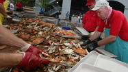"They call it ""the world's largest crab feast"" -- 2,500 people are expected to attend and finish off 478 bushels of crabs, 3,400 ears of corn, 130 gallons of crab soup, 1,800 hot dogs, 150 pounds of beef barbecue, and hundreds of gallons of soft drinks and beer."