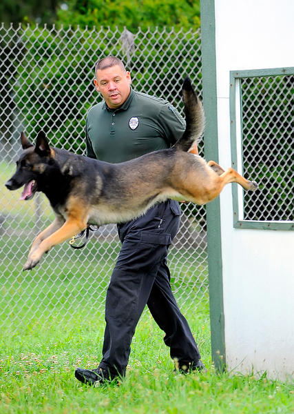 Greencastle (Pa.) Police Department K-9 officer Keith Russell works with his dog Rony Wednesday morning.