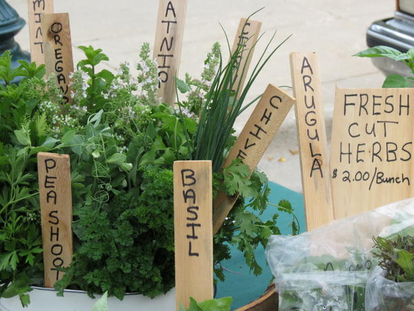 Herbs from Wildwood Gardens are photographed at the Petoskey Farmers Market.