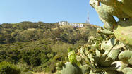 L.A. Walks: Beachwood Canyon and the Hollywood sign