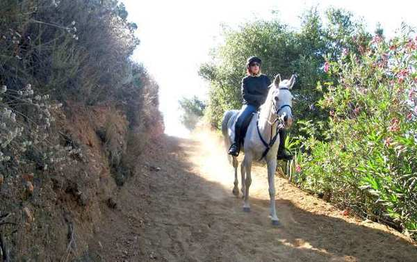 La Canada Flintridge Trails Council board member Stephanie Stroup and her horse, Mouse, find the recently reconfigured hill on the Gould Canyon Trail safer for both horse and rider.