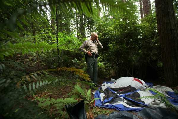 Arcata Police Park Ranger Dave Miller surveys trash and camping equipment left by the homeless in the Arcata Community Forest. Miller regularly patrols the redwood forest to rout campers.