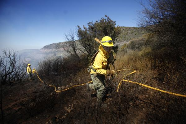 Members of the Forest Brigade (BRIFOR ) are deployed to fight a forest fire on the Erque ravine in the town of Vallehermoso on August 6, 2012, on the Spanish Canary island of La Palma.