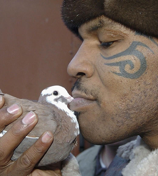 The Weirdest Reality TV Shows of All Time: This is a show about Mike Tyson raising pigeons in rooftop coops in New York City, and then racing them competitively. Apparently, hes had a love for the animals since he was a child, and a neighborhood bully killed one of his beloved pigeons and threw it in his face. Need we say more?