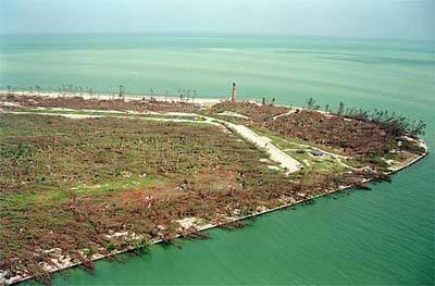 <b>Leveled by the winds</b><br>The hurricane flattened trees at Bill Baggs State Park, at the southern tip of Key Biscayne.