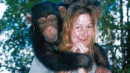 Chimp Attack On Charla Nash Not The State's Fault