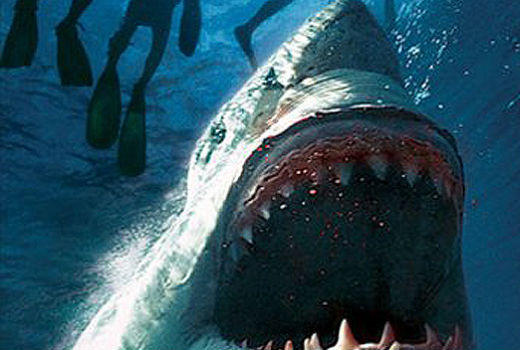 From 'Jaws' to 'Jabberjaw': 25 memorable sharks from pop culture: This direct-to-DVD low-budget shark flick might not have made the list if it werent for the fact that it also involves the Bermuda Triangle and aliens.