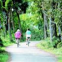 <b>Sanibel Island:</b> Cycle your way through