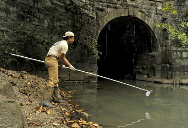 Blue Water Baltimore's David Flores collects murky water from Gwynns Run in Southwest Baltimore to check for indications of sewage contamination.
