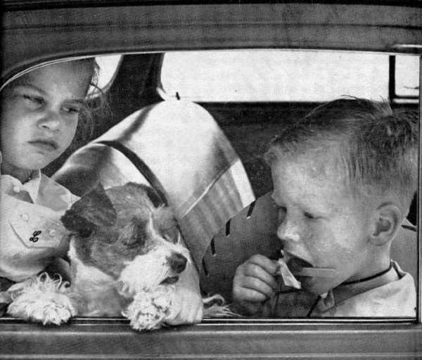 Five-year-old Lynn Blundell and pet dog Kelly look slightly resentful to see Bill Blundell, 4, finish a Popsicle without sharing it on a hot summers day. The photo was taken by George Anderson for the Aug. 14, 1952 issue of the Valley Sun. The Blundell family lived on Inverness Drive.