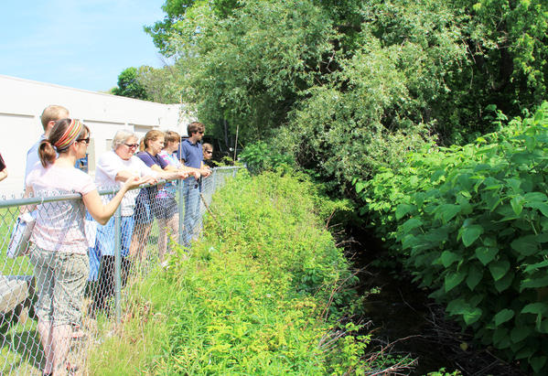 Jennifer Gelb (left), restoration ecologist for Tip of the Mitt Watershed Council, talks to a mix of council employees and University of Michigan graduate students about the invasive Japanese knotweed, growing along the banks of Tannery Creek.