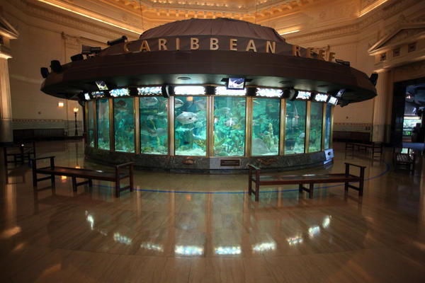 The viewing area around the Caribbean Reef tank on May 9, 2012, when it was closed during the NATO meetings.