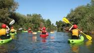 River kayaking: L.A.'s best-kept secret?