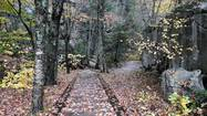 Photos: Fall colors