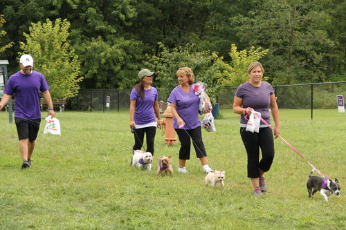 Dogs and their owners attended the Bark for Life event at the Elm Ridge Dog Park in Rocky Hill Aug. 18 to raise funds and awareness for the fight against cancer.