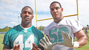 Miami Dolphins rookie report of 2012