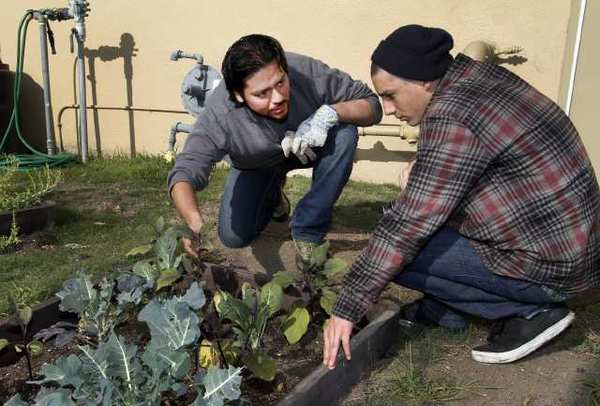 Ray Garcia gives gardening tips to high school student Max Marrone.