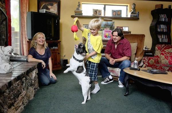 Hollye and Troy Dexter watch their son Evan, 6, play with Stitch, a French bulldog at the center of a legal battle that has stretched on for nearly three years.