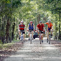 <b>Pinellas Trail:</b> 45 miles of scenic cycling