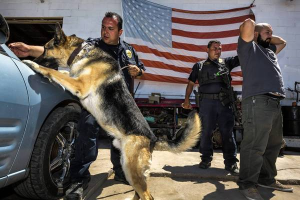 Officers John Zuniga and Christian Flores of the Nogales, Police Department perform a training exercise with one of their dogs.
