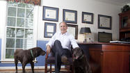 The Thienel Law Firm of Columbia has four associates. Managing member Stephen C. Thienel, however, has two more of his own -- chocolate Labs Mocha and Star, who spend the day greeting clients or curled up in his office, where they could be poster pups representing the portion of the firm's practice involving animal law.