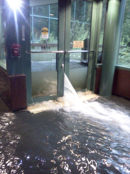 Water came over the museum¿s floodgates, inundating the entire lower level of the main museum building and the Wason Education Center early Saturday morning.
