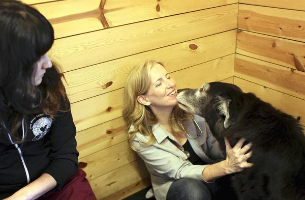 Veterinarian Barbara Royal, who owns the Royal Treatment Veterinary Center in Chicago, gets a kiss from Tara during the dog's exam last week.