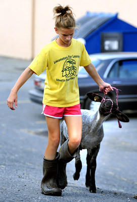 Christine Lambert, 12, of Alburtis walks one of her market lambs before showing it Tuesday afternoon. This is the 160th year of the Great Allentown Fair.