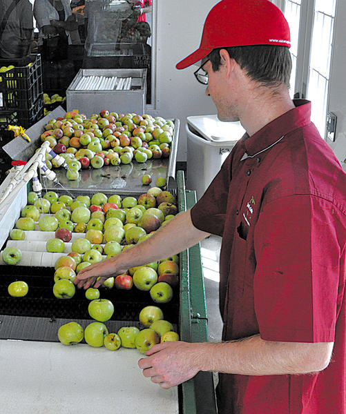 Michael Miller washes apples before pressing them to harvest the juice. Distillery Lane Ciderworks raises more than 40 kinds of apples, some of which end up in cider.