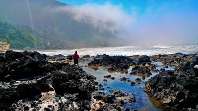 Weekend Escape: A coastal backyard in Yachats, Oregon