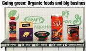 Organic food companies