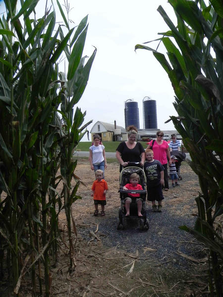 Erin Lowe of Waynesboro, Pa., enters the five-acre corn maze at Stoner's Dairy Farm in Mercersburg, Pa., on Saturday with her children, Kaleb, 1, and James, 5; nephew, Cole, 2; and other family and friends.