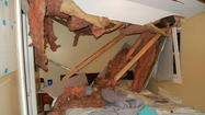 Tree crushes home, resident barely escapes serious injury