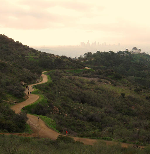 Mount Hollywood Trail in Los Angeles