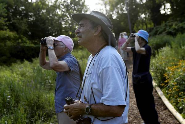 Hal Cohen, center, a veteran birder of Chicago, points out birds to Caroline Herzenberg, left, and Jennette Rader during a Wednesday morning bird walk at Wooded Island.