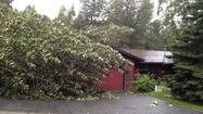 Windstorm Knocks Out Power In Anchorage Area