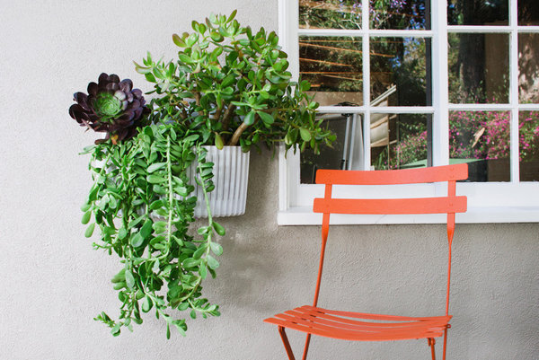 Living Wall Planter woolly pocket's new living wall planter - la times