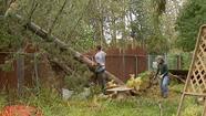 Neighbors Lend Helping Hand to Clear Storm Debris