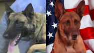 Two Anderson police dogs will get a heroic sendoff this weekend.