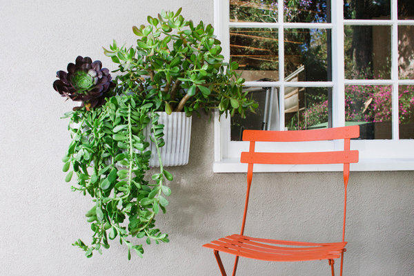 Woolly Pocket's Living Wall Planter