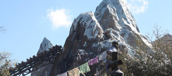 Expedition Everest is a high-speed roller coaster with a a close encounter with the infamous Yeti.