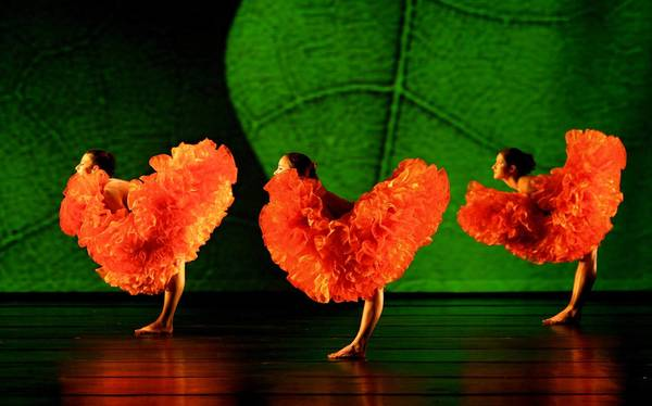 Momix performs Botanica Nov. 4 at Zoellner Arts Center. The multimedia work is grounded in nature's changing and beautiful imagery, and features costumes, props, puppetry and music.