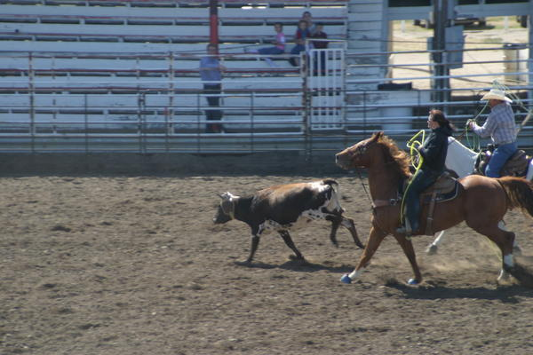 Team Roping at 1 p.m. at the Mobridge Rodeo Grounds