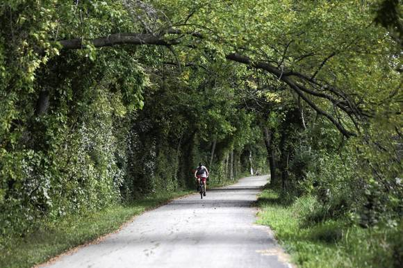 Ed Hausser of Shorewood rides the I&M Canal Trail as it passes through McKinley Woods County Forest Preserve August 31, 2012. (Armando L. Sanchez/Chicago Tribune)