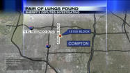 Pair of lungs found on South L.A. sidewalk