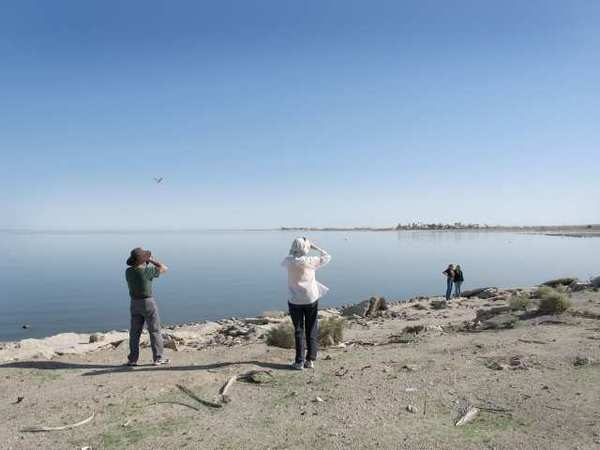 Visitors explore beaches of Salton Sea.